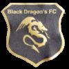 Logo Wappen - Black Dragons FC 2019 - FFBÖ Kleinfeldliga Wien