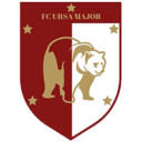 Logo Wappen Ursa Major