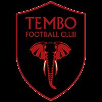 Logo Wappen Tembo FC FFBÖ Kleinfeldliga Wien