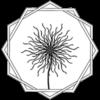 Strubobuobo Logo Wappen FFBÖ Kleinfeldliga Wien