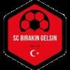 Wappen Logo SC Birakin Gelsin FFBÖ Kleinfeldliga Wien